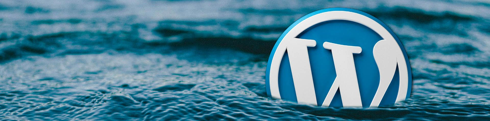WordPress SEO: What You Need to Know