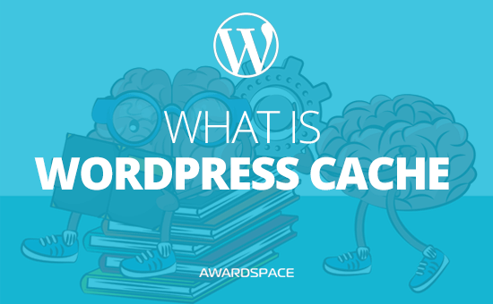 What is WordPress Cache – How to Enable Caching to Your WordPress Website